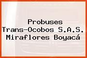 Probuses Trans-Ocobos S.A.S. Miraflores Boyacá