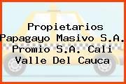 Propietarios Papagayo Masivo S.A. Promio S.A. Cali Valle Del Cauca