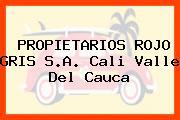 PROPIETARIOS ROJO GRIS S.A. Cali Valle Del Cauca