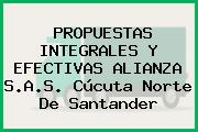PROPUESTAS INTEGRALES Y EFECTIVAS ALIANZA S.A.S. Cúcuta Norte De Santander