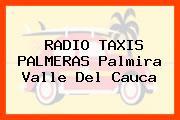 RADIO TAXIS PALMERAS Palmira Valle Del Cauca