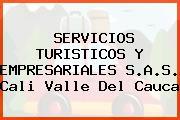 SERVICIOS TURISTICOS Y EMPRESARIALES S.A.S. Cali Valle Del Cauca