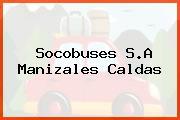 Socobuses S.A Manizales Caldas