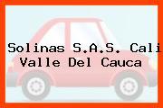 Solinas S.A.S. Cali Valle Del Cauca