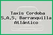 Taxis Cordoba S.A.S. Barranquilla Atlántico