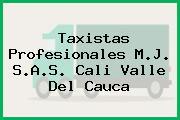 Taxistas Profesionales M.J. S.A.S. Cali Valle Del Cauca