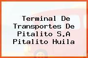 Terminal De Transportes De Pitalito S.A Pitalito Huila