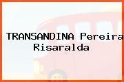 TRANSANDINA Pereira Risaralda