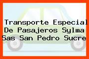 Transporte Especial De Pasajeros Sylma Sas San Pedro Sucre
