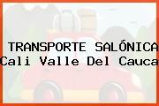 TRANSPORTE SALÓNICA Cali Valle Del Cauca