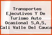 Transportes Ejecutivos Y De Turismo Auto Ocasional S.A.S. Cali Valle Del Cauca