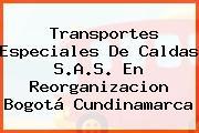 Transportes Especiales De Caldas S.A.S. En Reorganizacion Bogotá Cundinamarca