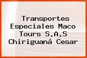 Transportes Especiales Maco Tours S.A.S Chiriguaná Cesar
