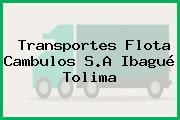Transportes Flota Cambulos S.A Ibagué Tolima