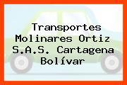 Transportes Molinares Ortiz S.A.S. Cartagena Bolívar