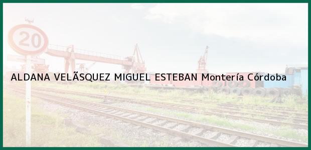 Teléfono, Dirección y otros datos de contacto para ALDANA VELÃSQUEZ MIGUEL ESTEBAN, Montería, Córdoba, Colombia