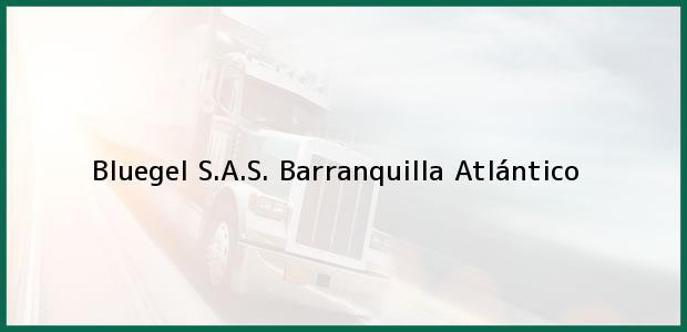 Teléfono, Dirección y otros datos de contacto para Bluegel S.A.S., Barranquilla, Atlántico, Colombia