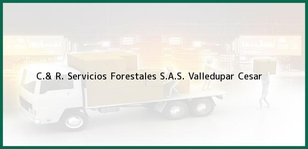 Teléfono, Dirección y otros datos de contacto para C.& R. Servicios Forestales S.A.S., Valledupar, Cesar, Colombia