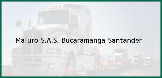 Teléfono, Dirección y otros datos de contacto para Maluro S.A.S., Bucaramanga, Santander, Colombia