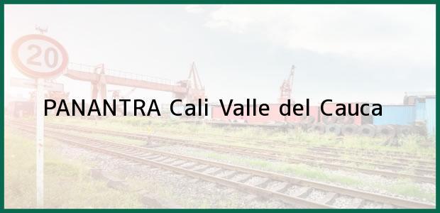 Teléfono, Dirección y otros datos de contacto para PANANTRA, Cali, Valle del Cauca, Colombia