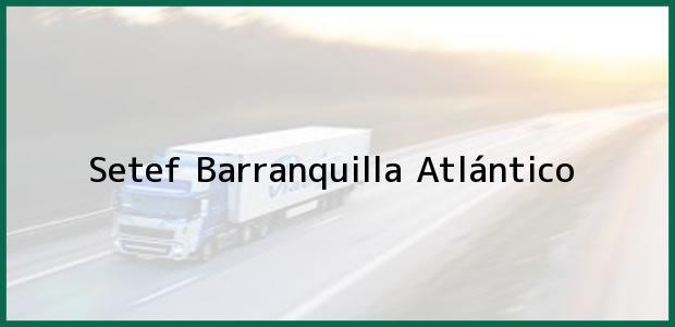 Teléfono, Dirección y otros datos de contacto para Setef, Barranquilla, Atlántico, Colombia