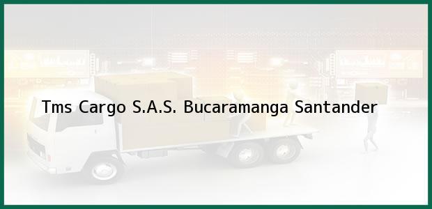 Teléfono, Dirección y otros datos de contacto para Tms Cargo S.A.S., Bucaramanga, Santander, Colombia