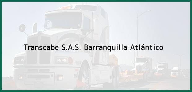Teléfono, Dirección y otros datos de contacto para Transcabe S.A.S., Barranquilla, Atlántico, Colombia