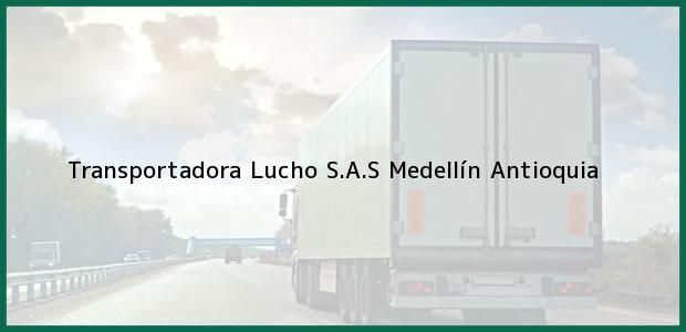Teléfono, Dirección y otros datos de contacto para Transportadora Lucho S.A.S, Medellín, Antioquia, Colombia