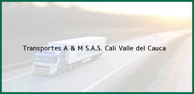 Teléfono, Dirección y otros datos de contacto para Transportes A & M S.A.S., Cali, Valle del Cauca, Colombia