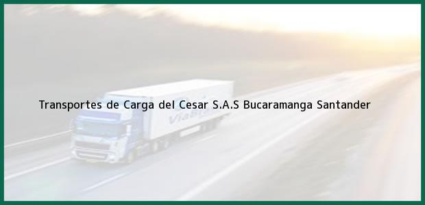 Teléfono, Dirección y otros datos de contacto para Transportes de Carga del Cesar S.A.S, Bucaramanga, Santander, Colombia