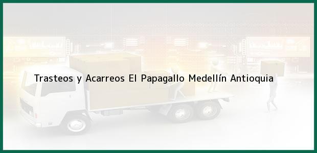 Teléfono, Dirección y otros datos de contacto para Trasteos y Acarreos El Papagallo, Medellín, Antioquia, Colombia