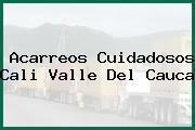 Acarreos Cuidadosos Cali Valle Del Cauca