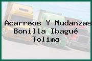 Acarreos Y Mudanzas Bonilla Ibagué Tolima