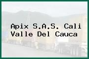 Apix S.A.S. Cali Valle Del Cauca