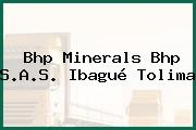 Bhp Minerals Bhp S.A.S. Ibagué Tolima