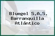 Bluegel S.A.S. Barranquilla Atlántico