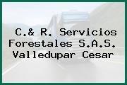 C.& R. Servicios Forestales S.A.S. Valledupar Cesar