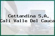 Cettandina S.A. Cali Valle Del Cauca