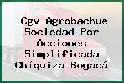 Cgv Agrobachue Sociedad Por Acciones Simplificada Chíquiza Boyacá
