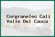 Corgraneles Cali Valle Del Cauca
