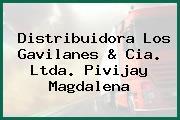Distribuidora Los Gavilanes & Cia. Ltda. Pivijay Magdalena