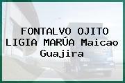 FONTALVO OJITO LIGIA MARÚA Maicao Guajira