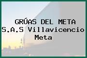 GRÚAS DEL META S.A.S Villavicencio Meta