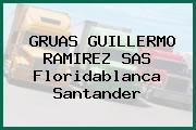 Gruas Guillermo Ramirez S.A.S. Floridablanca Santander