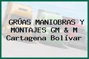 GRÚAS MANIOBRAS Y MONTAJES GM & M Cartagena Bolívar