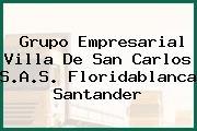 Grupo Empresarial Villa De San Carlos S.A.S. Floridablanca Santander