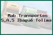 Mab Transportes S.A.S Ibagué Tolima