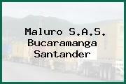 Maluro S.A.S. Bucaramanga Santander