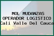 MOL MUDANZAS OPERADOR LOGISTICO Cali Valle Del Cauca