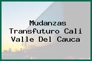 Mudanzas Transfuturo Cali Valle Del Cauca